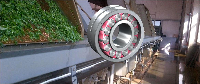 Conveyor Belt - Documented Cost Saving